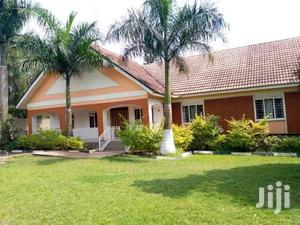 Gorgeous 4 Bed Roomed Bungalow In Naguru Self Contained