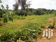 Plot of Land 💯/50ft in Namugongo | Land & Plots For Sale for sale in Central Region, Kampala