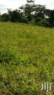 Nsanvu Plots At 17millions | Land & Plots For Sale for sale in Western Region, Kisoro