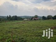 Private Mailo Land With Aready Land Title. | Land & Plots For Sale for sale in Central Region, Wakiso