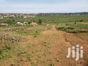 Private Mailo Land In Kawuku Ziru. | Land & Plots For Sale for sale in Central Region, Wakiso