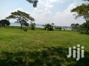 Hot Plot In Munyonyo For Sale | Land & Plots For Sale for sale in Central Region, Kampala
