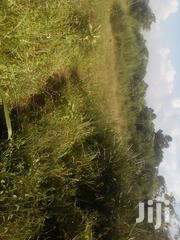 Forest Park Area Mityana Rd 50x100 Titled Plots | Land & Plots For Sale for sale in Central Region, Wakiso
