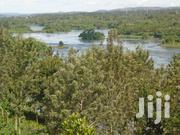 Half an Acre of Titled Land for Sale Along the Nile at Kibibi | Land & Plots For Sale for sale in Eastern Region, Jinja