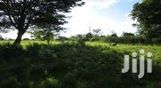 23 Acres of Untitled Farmland for Sale at Mbulamuti Kamuli   Land & Plots For Sale for sale in Eastern Region, Jinja