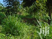 Half Acre of Private Mailo Land for Sale at Bukaya Residential Area   Land & Plots For Sale for sale in Eastern Region, Jinja