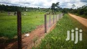Home On Two Acres With 2 Big Fish Ponds With Big Fish On Sale Masurita | Houses & Apartments For Sale for sale in Central Region, Kampala