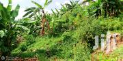 Land at Seguku Nazziba for Sale | Land & Plots For Sale for sale in Central Region, Kampala