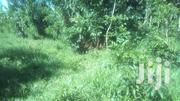 Fertile Land For Farming | Land & Plots For Sale for sale in Central Region, Luweero