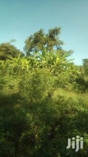 Suitable for Farming | Land & Plots For Sale for sale in Western Region, Masindi