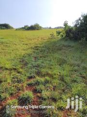 Suitable For Goat Keeping | Land & Plots For Sale for sale in Central Region, Nakasongola