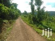 Three Acres on Quick Sale in Katende Masaka Rd With Coffee and Titled | Land & Plots For Sale for sale in Central Region, Kampala
