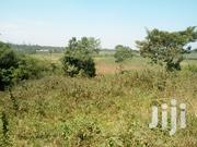 40 Acres of Land on Sale at 18m Per Acre in Nakifuma, Kayunga Road | Land & Plots For Sale for sale in Central Region, Kampala