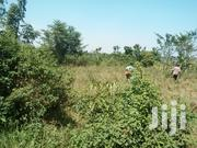 45 Acres of Land on Sale at 17m Per Acre in Nkokonjeru, Mukono | Land & Plots For Sale for sale in Central Region, Kampala