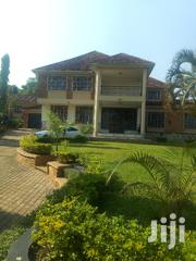 Five Bedroom Mansion In Muyenga For Rent | Houses & Apartments For Rent for sale in Central Region, Kampala