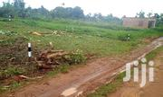 Plots At Gayaza Nakwero For Sale | Land & Plots For Sale for sale in Central Region, Kampala