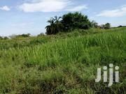 Land In Nakaseke Butalangu Touching River For Sale | Land & Plots For Sale for sale in Central Region, Luweero