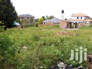 Prime Plot of 25 Decimals in Kira Bulindo | Land & Plots For Sale for sale in Central Region, Wakiso