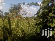 Land In Budo On Masaka Road For Sale | Land & Plots For Sale for sale in Central Region, Wakiso