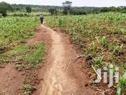 Land 10 Acres Matuga Kiwebwa | Land & Plots For Sale for sale in Central Region, Kampala
