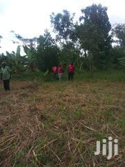 Half an Acre in Busiika Ready Land Title at Only 27m   Land & Plots For Sale for sale in Central Region, Kampala