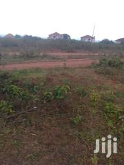 1000 Arcres At 1 Million Each With Ready Titles | Land & Plots For Sale for sale in Nothern Region, Gulu