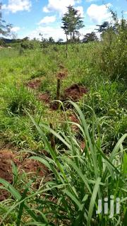 6.5 Acres of Land for Sale in Kapeeka. | Land & Plots For Sale for sale in Central Region, Luweero
