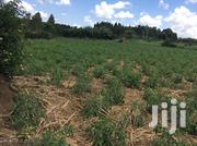 7 Acre Land | Land & Plots For Sale for sale in Central Region, Luweero