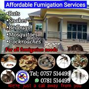 Fumigation For Bedbugs | Cleaning Services for sale in Central Region, Kampala