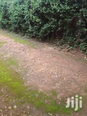 Plot For Sale 100x100 Title Kyengera | Commercial Property For Sale for sale in Central Region, Wakiso