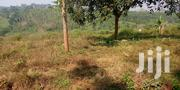 House for at Mende Wakiso   Houses & Apartments For Sale for sale in Central Region, Wakiso