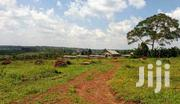 Land In Manyangwa Gayaza Road For Sale | Land & Plots For Sale for sale in Central Region, Wakiso