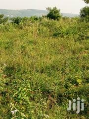 30 Acres of Land for Sale | Land & Plots For Sale for sale in Central Region, Luweero