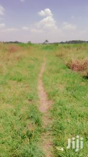 Land In Zirobwe For Sale | Land & Plots For Sale for sale in Central Region, Luweero
