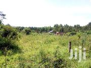 Plots for Sale in Bugema GAYAZA Road | Land & Plots For Sale for sale in Central Region, Kampala