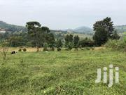 Land In Wakiso For Sale   Land & Plots For Sale for sale in Central Region, Wakiso