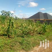 Plot of Land for Sale in Gayaza 50/100ft | Land & Plots For Sale for sale in Central Region, Kampala