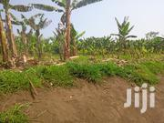 6 Acres of Multi Purpose Land in Mugoma Fort Portal on Sale | Land & Plots For Sale for sale in Western Region, Kabalore