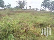 9 Plots For Sale At A Price Of 6.5 M | Land & Plots For Sale for sale in Central Region, Mukono
