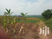 Plots for Sale in Namugongo BUKERERE Kasayi | Land & Plots For Sale for sale in Central Region, Kampala