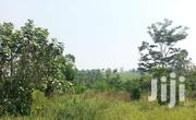 7acres On Sale Mukono Katosi Road At Kisoga | Land & Plots for Rent for sale in Central Region, Kampala