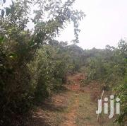 4 Acres For Sale In Gayaza Zirobwe Road In Zirobwe Town Center | Land & Plots For Sale for sale in Central Region, Kampala