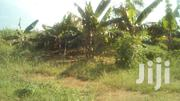 Good For Farming | Land & Plots For Sale for sale in Central Region, Luweero