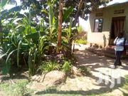 House On Sale Located At Matugga Kigoggwa Just 1kilometer From Main Rd | Houses & Apartments For Sale for sale in Central Region, Wakiso