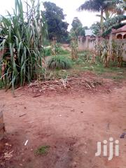 Land for Sale | Land & Plots For Sale for sale in Central Region, Mukono