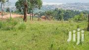 Gayaza Plot of Land for Sale 60/💯 Ft | Land & Plots For Sale for sale in Central Region, Kampala