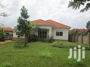 Nice And Affordabe Four Bed Room Stand Alone At 1.5m Alond Entebe Road | Houses & Apartments For Rent for sale in Western Region, Kisoro