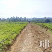 Titled Plots In Gayaza Kiwenda For Sale | Land & Plots For Sale for sale in Central Region, Kampala