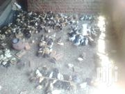 Birds Of One Month | Birds for sale in Central Region, Kampala
