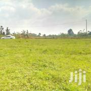 Land In Gayaza Namayina For Sale | Land & Plots For Sale for sale in Central Region, Mukono